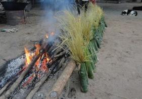 BambooRice-LS