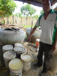 Rice vine making
