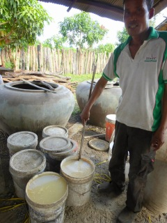 Rice vine making